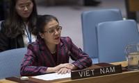 Vietnam calls on UN Security Council to solve Israel-Palestine conflict