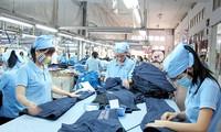 Vietnam's garment export rises