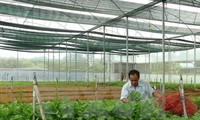 Vietnam promotes high-tech agriculture