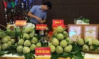 Agricultural trade at Vietnam-China border promoted
