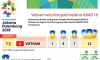 Voice of Vietnam awards 8,600 USD to Vietnamese rowing team