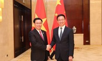 Deputy PM Vuong Dinh Hue holds talks with Chinese Vice Premier