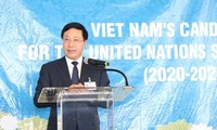 Deputy PM calls for support to Vietnam's UN Security Council member candidacy