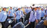 Vietnam's labor export generates 3 billion dollars last year