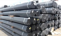 Vietnamese government does not determine prices in carbon steel exports to Canada