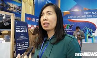 Vietnam FM spokesperson: Vietnam capable of hosting major international events