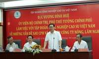 Vietnam Rubber Group urged to scale up