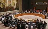Vietnam's bid for UNSC's non-permanent seat receives international support