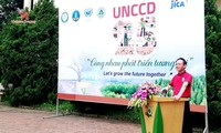 Vietnam strengthens fight against desertification, land degradation