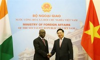 Vietnam values ties with Ivory Coast: Deputy PM