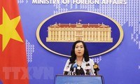 Vietnam resolutely prevents trade frauds