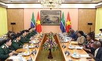 Vietnam, South Africa agree to maintain defense policy dialogue