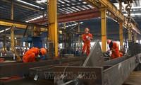 促进越南劳动生产活动中的性别平等