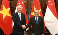 促进越南-新加坡战略伙伴关系