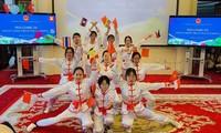 越南驻中国大使馆举行东盟各国妇女交流会