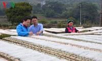 越南 - 创业国家