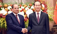 Egypt pledges optimal conditions for Vietnamese products