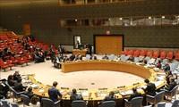 Vietnam voices concern over escalating conflict in Gaza Strip