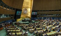 UN adopts Japan's antinuke resolution