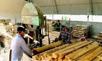 Vietnam targets 10.5 billion USD in forestry product export in 2019