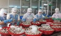 Corea del Sur- potencial de mercado acuícola vietnamita