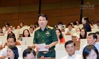 Parlamento vietnamita analiza borrador de Ley de protección y desarrollo forestal