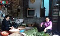 """Oficio tradicional de hacer el """"banh chung"""" en la aldea de Dam"""