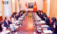 Sesionan XI Conferencia Consultiva Política Vietnam-Singapur