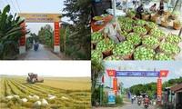El 39% de las comunas vietnamitas cumplirán con los estándares del nuevo campo en 2018