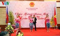 ชาวเวียดนามที่อาศัยในต่างประเทศฉลองเทศกาลตรุษเต๊ตปีวอก 2016