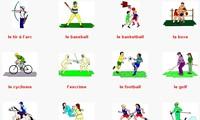 กีฬา (บทที่ 1)