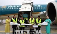 เวียดนามแอร์ไลน์เพิ่มเที่ยวบินไปยังเยอรมนี