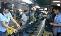รองเท้าหนังเวียดนามพัฒนาอย่างเข้มแข็ง