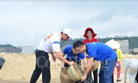 จังหวัดกว๋างนิงห์เปิดการรณรงค์ทำความสะอาดชายหาดอ่าวฮาลอง