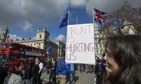 การเดินขบวนประท้วง Brexit ครั้งใหญ่ที่สุดในหลายทศวรรษที่ผ่านมาในกรุงลอนดอน