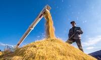จี 20 ให้ความสนใจเป็นอันดับต้นๆต่อการประยุกต์ใช้ปัญญาประดิษฐ์และหุ่นยนต์ในหน่วยงานการเกษตร