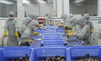 Vietnam, WTO hold seminar on trade disputes