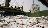 Vietnam rice exports reach 7 million tons