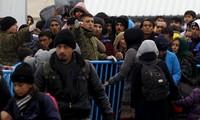 Macedonia shuts border to illegal migrants