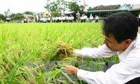 Mekong Delta region lures investment in technical infrastructure