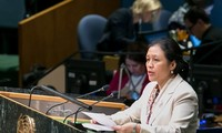 Vietnam calls for world peace and security