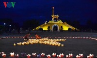 Tours to Quang Tri battlefields