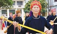 Halong Karneval-eine Kulturveranstaltung