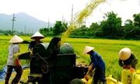 Aufklärung zur Neugestaltung ländlicher Gebiete