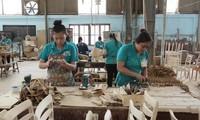Russland - ein vielversprechender Markt für vietnamesische Unternehmen