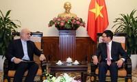 Politische Konsultation zwischen Vietnam und Iran