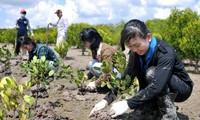 Vietnam und Deutschland verstärken Zusammenarbeit in den Bereichen Ressourcen und Umwelt