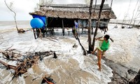 Vietnam engagiert sich mit der internationalen Gemeinschaft für die Anpassung an den Klimawandel