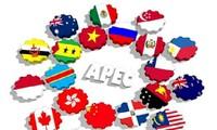 Stadt Nha Trang- Erster Ort für APEC-Jahr 2017 in Vietnam