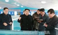 Nordkorea weist die Entwicklung von Biowaffen zurück